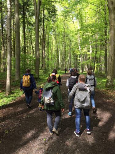 Tragespaziergang Trageberatung Vorarlberg